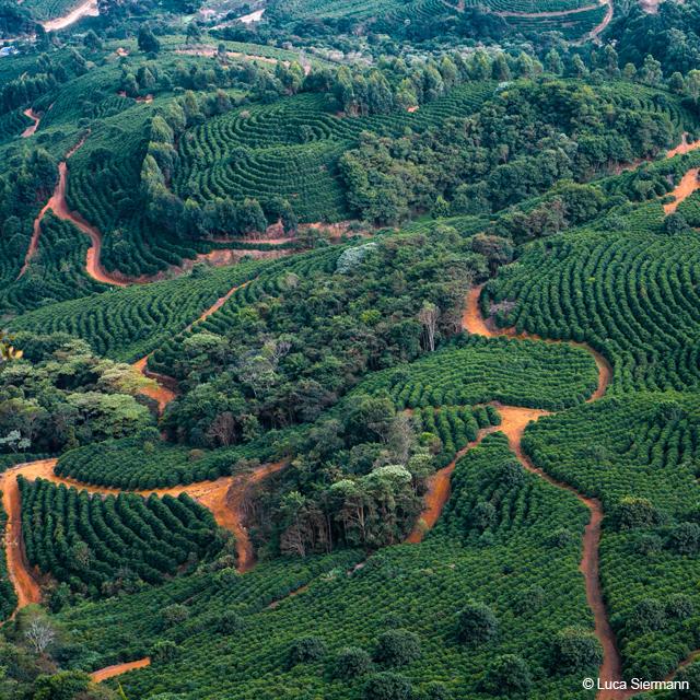 Farm Fazendas Dutra